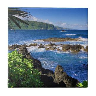 Beautiful Hawaii Tile