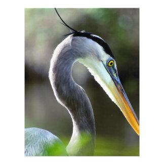 Beautiful Heron Letterhead