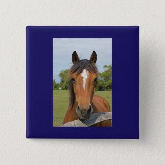Beautiful horse button, pin, gift idea 2 inch square button