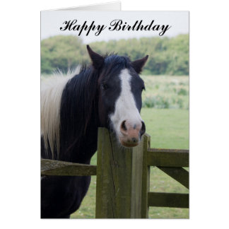 Beautiful Horse head birthday greeting card