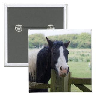 Beautiful Horse head close-up button, gift idea