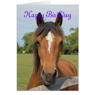 Beautiful horse head custo birthday card