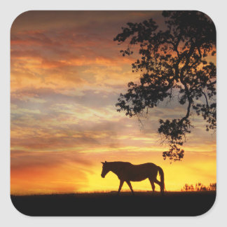 Beautiful Horse in a Fiery Sunset Stickers! Square Sticker