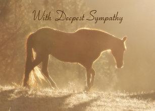 For Horse Pet Sympathy Cards Zazzleca