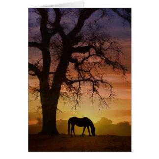 Beautiful Horse in Southwestern Sunset Birthday Card