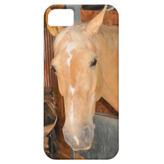 Beautiful horse iPhone 5 case