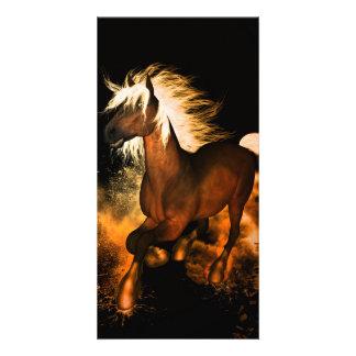 Beautiful horse customized photo card