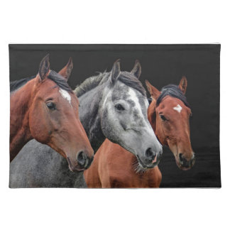 BEAUTIFUL HORSE PORTRAIT, MAT FOR HORSE LOVERS