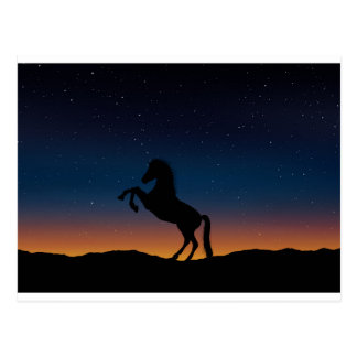 BEAUTIFUL HORSE STALLION POSTCARD
