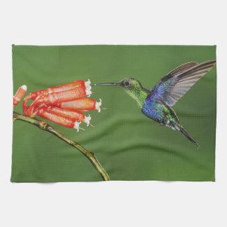 Beautiful Hummingbird Kitchen Towel