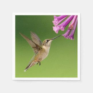 Beautiful Hummingbird Nature Scenery Paper Napkin
