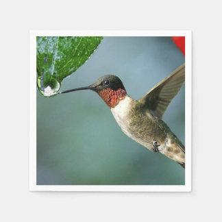 Beautiful Hummingbird Nature Scenery Paper Napkins