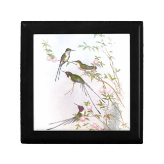 BEAUTIFUL HUMMINGBIRDS GIFT BOXES