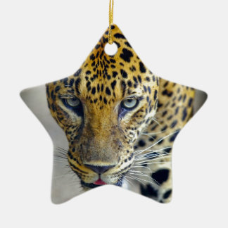 Beautiful jaguar ceramic ornament