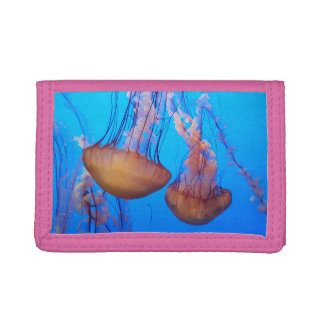 Beautiful Jellyfish Wallet