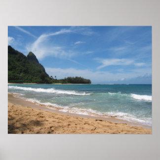 Beautiful Kauai beaches Poster