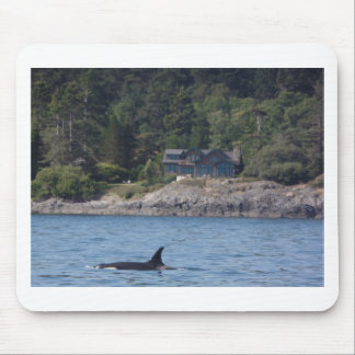 Beautiful Killer Whale Orca in Washington State Mouse Pad