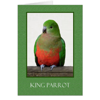 Beautiful King Parrot, Australian bird Card