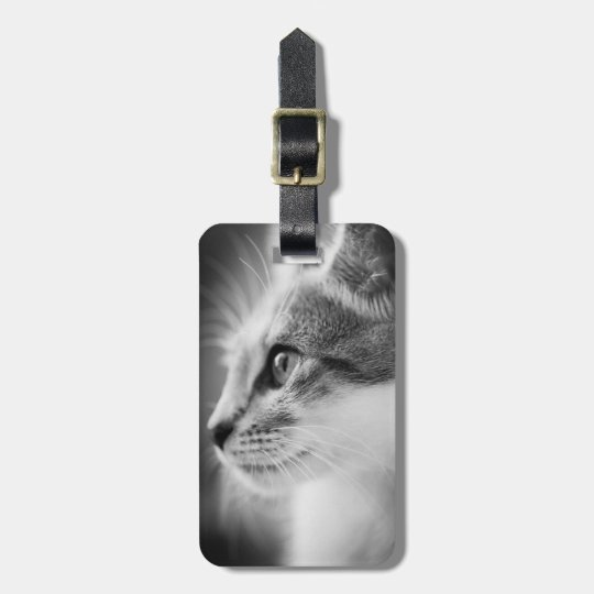Beautiful Kitten Luggage Tag
