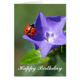 Beautiful Ladybug on Periwinkle Birthday Card
