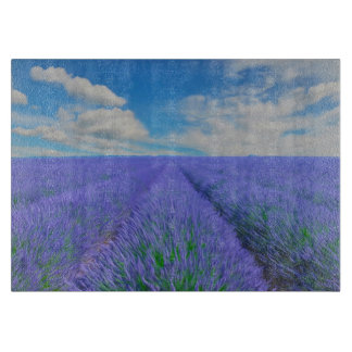 Beautiful landscape of lavender fields cutting board