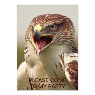 Beautiful Lanner Falcon Invitation