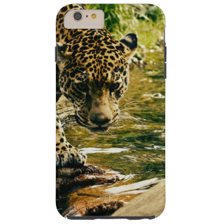 Beautiful Leopard Wild Cat Photograph Tough iPhone 6 Plus Case