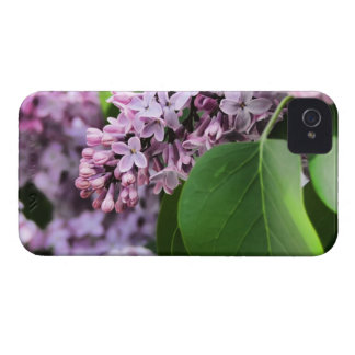 Beautiful Lilac Bloom Case-Mate iPhone 4 Case