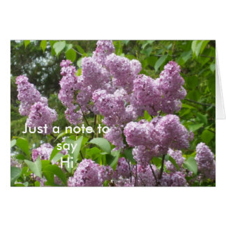 Beautiful Lilac Bush Card