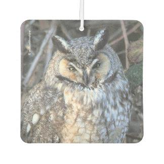 Beautiful Long-Eared Owl at Sunset Air Freshener