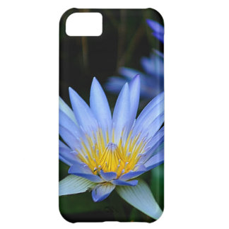 Beautiful lotus flowers and meaning cover for iPhone 5C