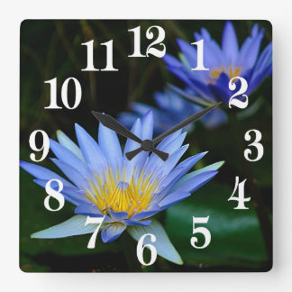 Beautiful lotus flowers and meaning square wall clock