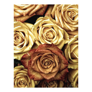 beautiful luxury roses letterhead