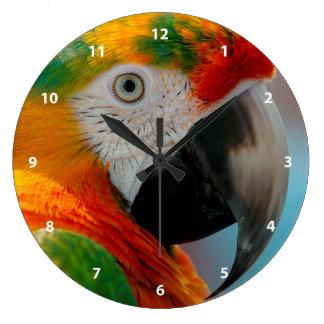 Beautiful Macaw Clock