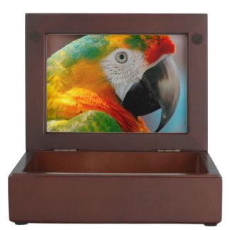 Beautiful Macaw Keepsake Boxes