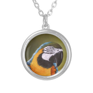 Beautiful Macaw Necklace
