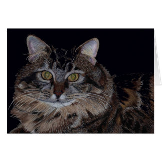 Beautiful Maine Coon Cat Greeting Card