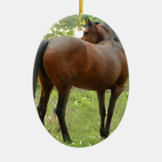 Beautiful Mare Ceramic Ornament
