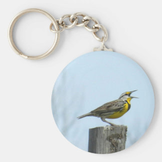 Beautiful meadowlark with yellow and gray markings keychain
