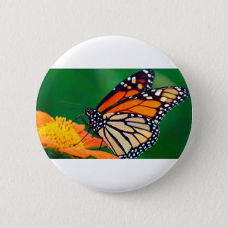 Beautiful Monarch Butterfly 2 Inch Round Button