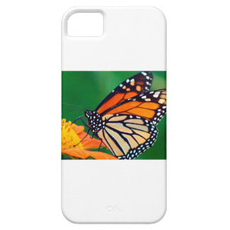 Beautiful Monarch Butterfly iPhone 5 Cover