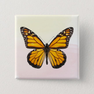 Beautiful Monarch Butterfly Orange Black 2 Inch Square Button