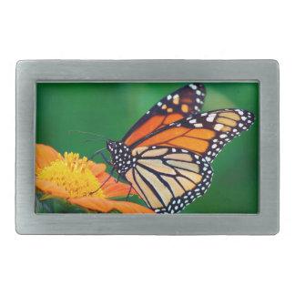 Beautiful Monarch Butterfly Rectangular Belt Buckles