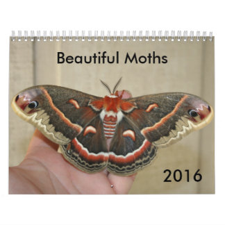 Beautiful Moths Calendar 2016