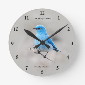 Beautiful Mountain Bluebird Round Clock