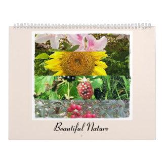 Beautiful Nature Enhanced Photographic Nature Art Calendar
