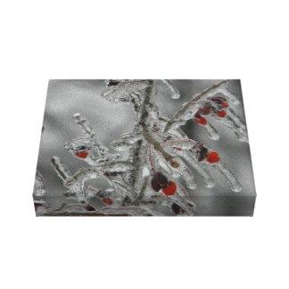 Beautiful Nature Winter Ice Scene Canvas Print