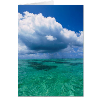 Beautiful Ocean Naturescape Card