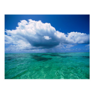 Beautiful Ocean Naturescape Postcard