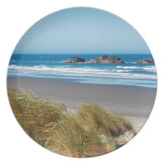 Beautiful ocean view plate